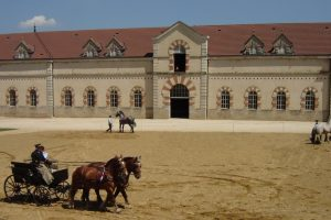 haras national